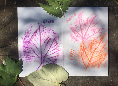 Nature Journaling Activities