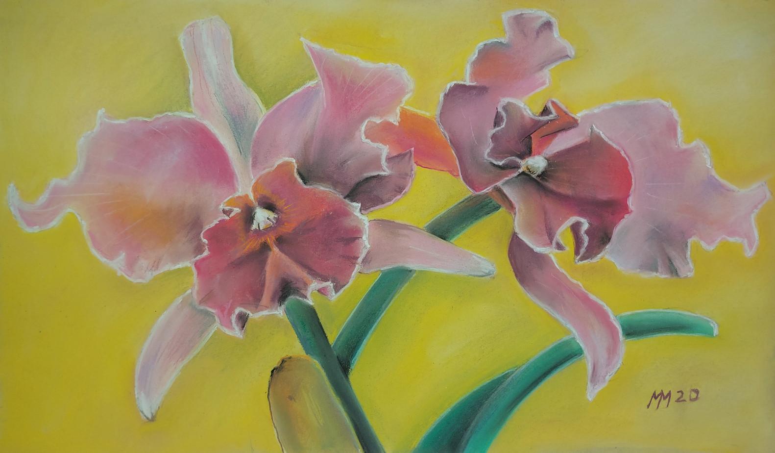 """""""Zwei Orchideen"""""""