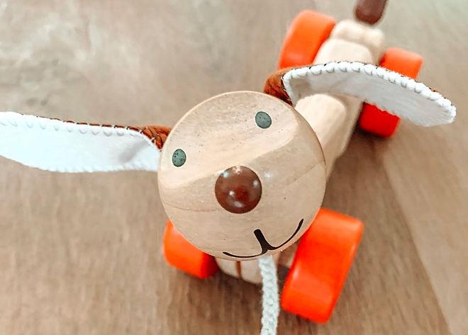 tibitibi-plantoys-chien-en-laisse-happy-