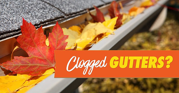 Gutter Cleaning Macomb Illinois