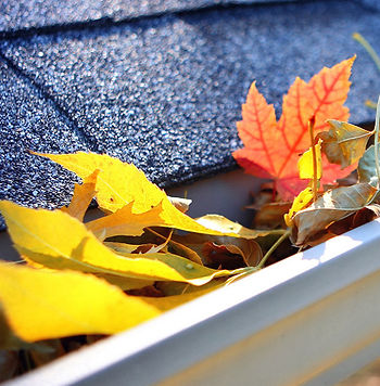 Gutter Cleaning Macomb Illinois, Gutter Cleaning Peoria Illinois