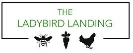 ladybird landing4.jpg