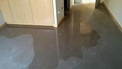 expert expertise sinistre inondation humidité infiltration fuite litige