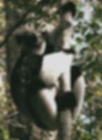 gemstones-lemurs-madagascar-i8776-180802-01832.adapt_edited.jpg