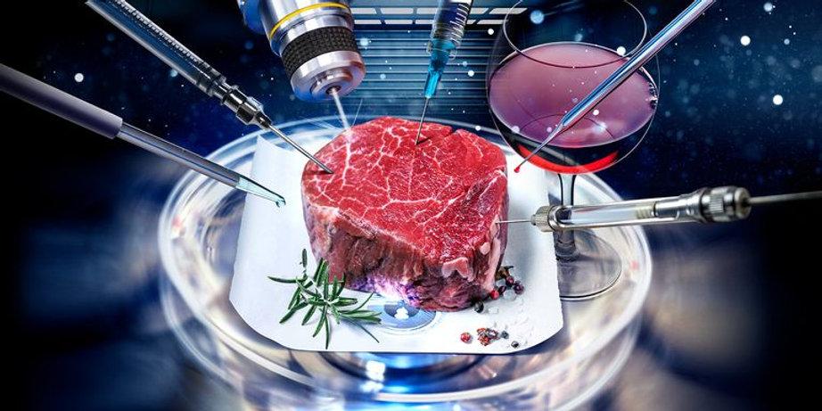 fake-steak-index-1-1619538953.jpg