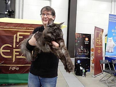Норвежская лесная кошка FI RockyHill's Choctaw