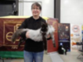 Норвежская лесная кошка Dorothy Viking Heritage RU