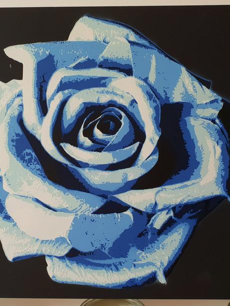 Rose (Blue)