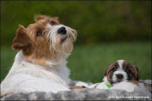 Mabel en Linn.jpg