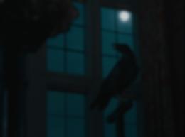 Screen Shot 2020-02-19 at 00.12.41.png