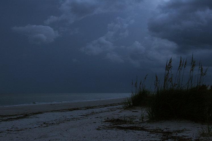 Moonlit Florida Shore