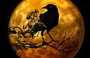 smokey Raven.jpg