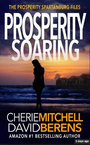 Prosperity Soaring - Book 3