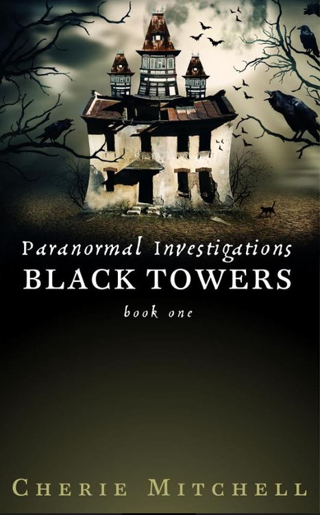 Black Towers - Paranormal Investigations