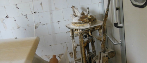Súlyos higiéniai problémák miatt zárt be egy budapesti pékséget a NÉBIH