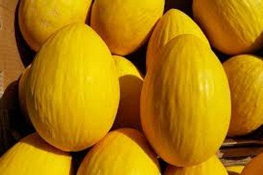 Large Honeydew Melon