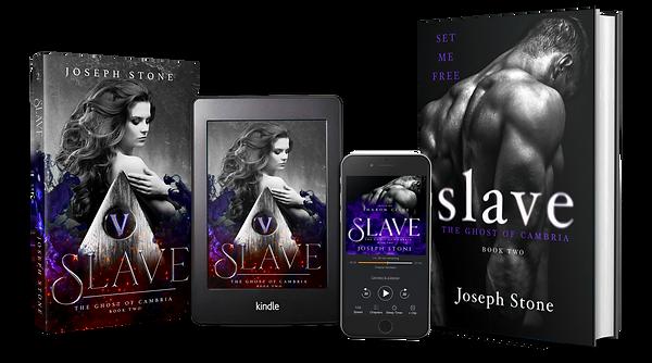 Slave Media (Transparent).png