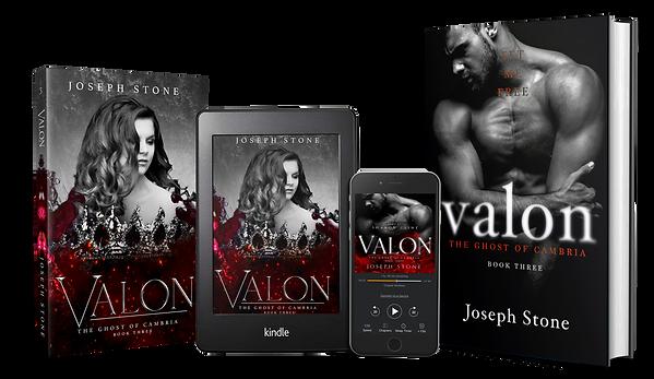 Valon Media (Transparent).png
