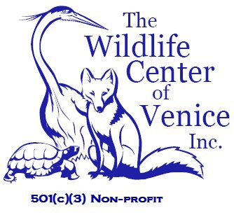 Getting to Know: The Wildlife Center of Venice