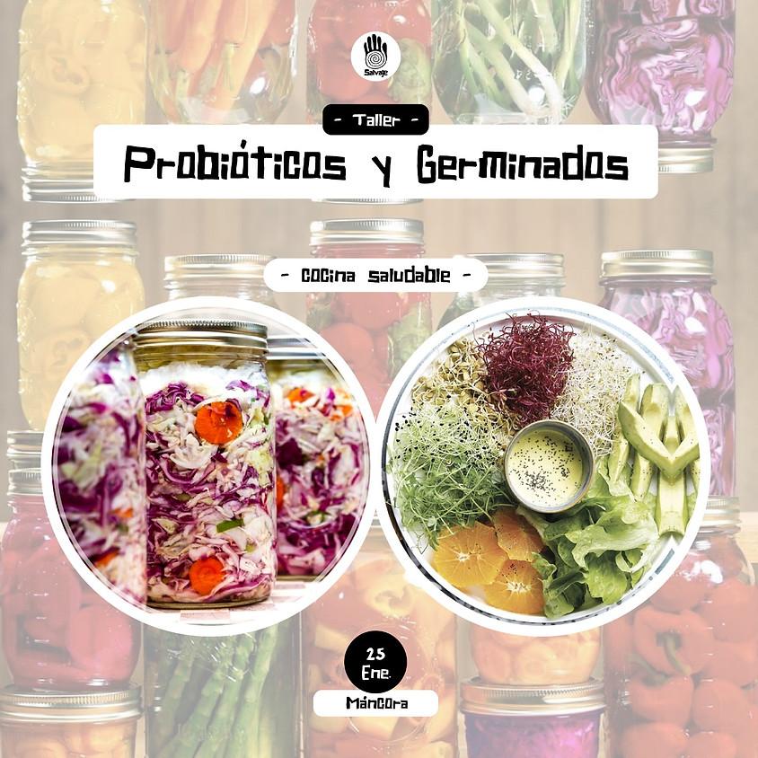 Probióticos y Germinados | Mancora