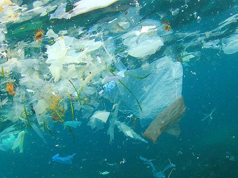 plastic in sea environmental eco