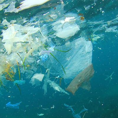 Plastic Environment.jpg