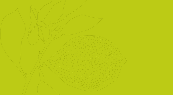 Lemon outline on lime green background