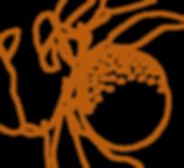 Framesi Morphosis Purifying Shampoo Orange Outline