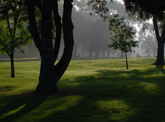 View of golf course from Greenview Manor