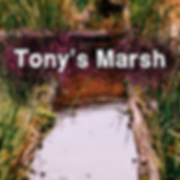 CWSP Season 3 Episode 10 Tony's Marsh Sm