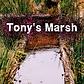 CWSP Season 3 Episode 10 Tony's Marsh Sm
