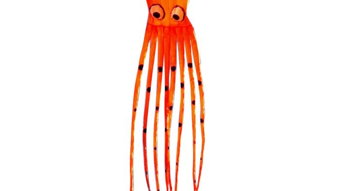 8mtr Long Octopus (High as a kite)