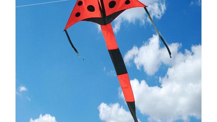Vista Ladybird Kite