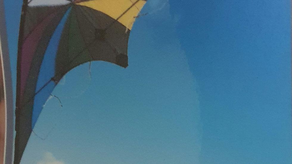 Windspeed Backdraft