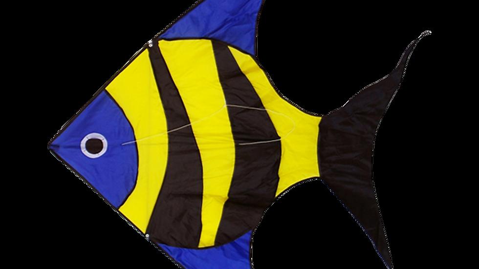 Reef Fish (High as a kite)
