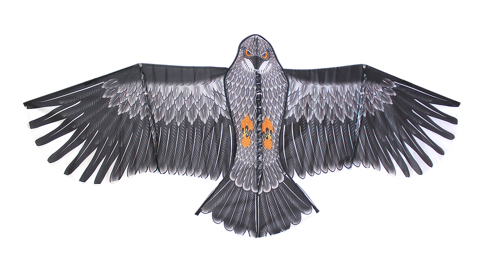 Super Eagle (High as a kite)