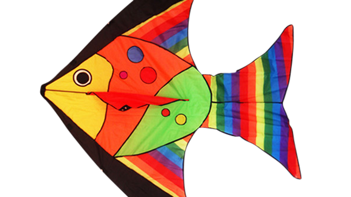 Tropical Fish (High as a kite)