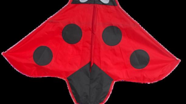 Ladybird (High as a kite)