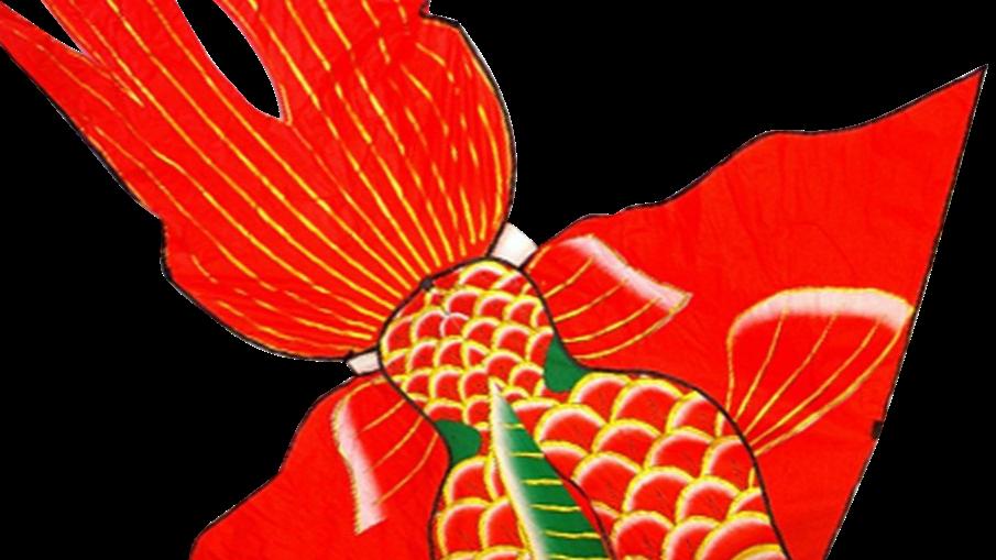 Giant Goldfish (High as a kite)