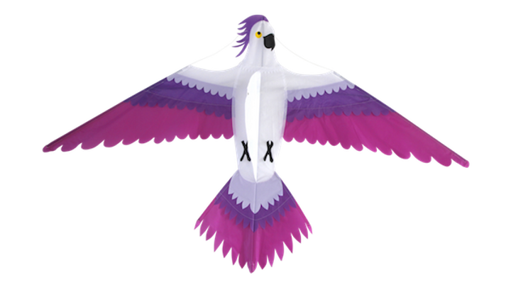 Parrot (High as a kite)