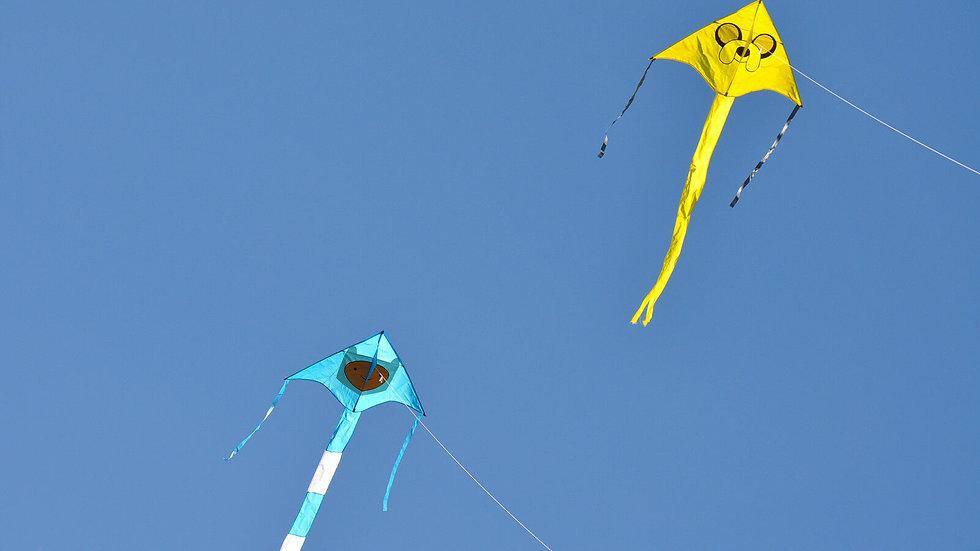 Finn Vista Kite