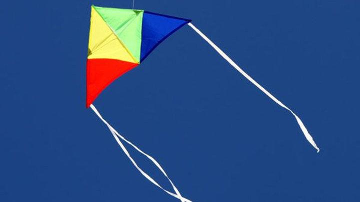 Windspeed Junior Delta