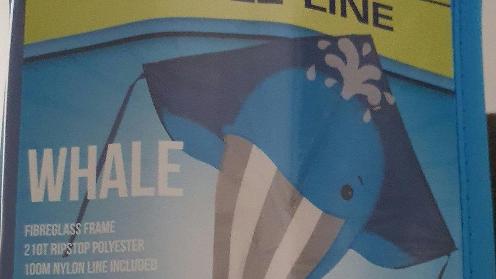 Whale ( High as a kite)