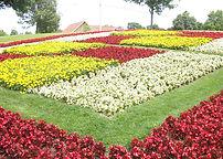 Beauty of Quilt Gardens