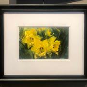 Daffodils ($450)