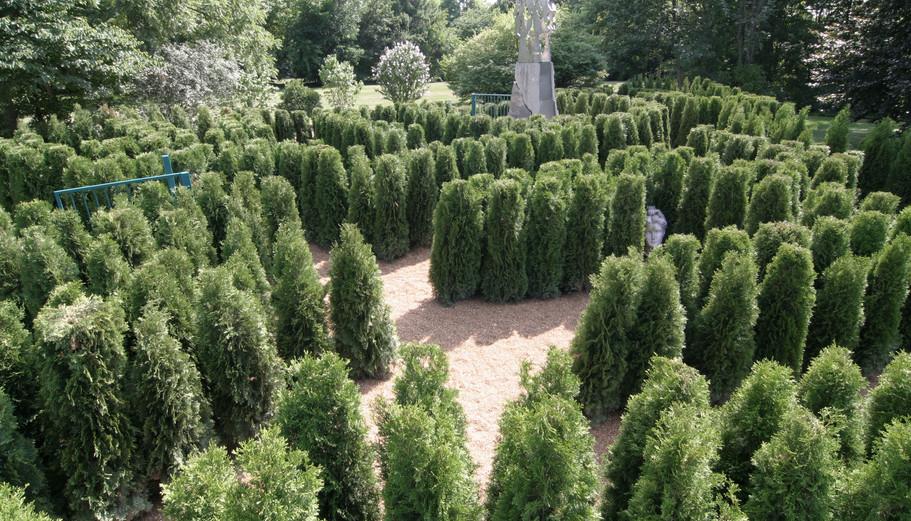 Charley Creek Gardens
