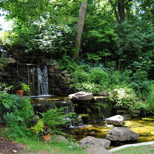 Charley Creek Gardens