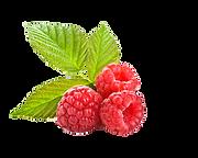 Raspberry UV Protection