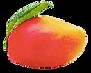 Mango Skincare