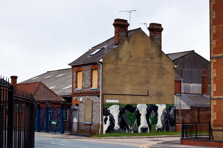 Reading cattle market
